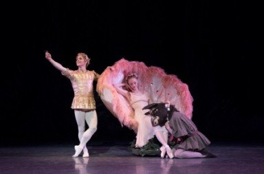 Teresa Reichlen and Daniel Ulbricht as Titania and Oberon, with Harrison Coll as Bottom Photo Paul Kolnik