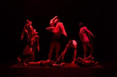 SFP Company - review by CriticalDance