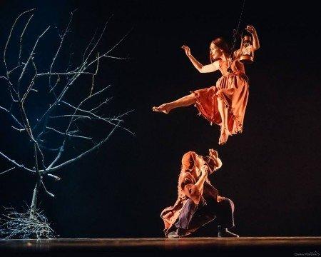 Provincial Dances Theater: Impressive Avant-Garde
