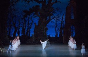 """David Hallberg, Gillian Murphy, Stella Abrera and members of American Ballet Theatre in """"Giselle,"""" in performance in Oman. Photo by Khalid Al-Busaidi."""