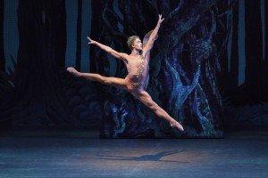 "New York City Ballet dancer Harrison Ball in George Balanchine's ""A Midsummer Night's Dream"" Photo by Paul Kolnik"