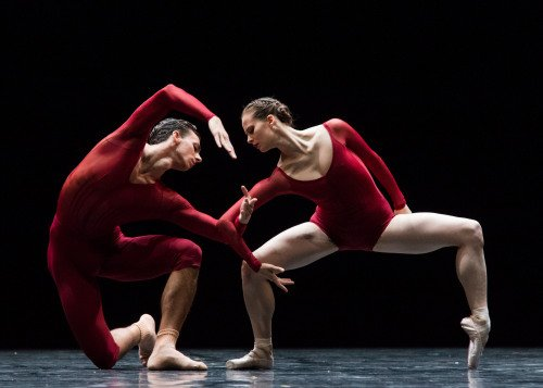Semperoper Ballett in Neue Suite Photo: Ian Whalen