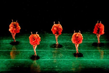 "MOMIX dancers in ""Marigolds"" Photo by Max Pucciarello"