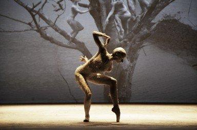 Companhia de Dança Deborah Colker, Dog-Without Feathers, photo courtesy of the Company