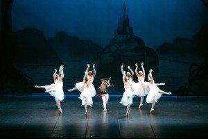 """Les Ballets Trockadero de Monte Carlo, here in """"Swan Lake"""" Photo by Marcello Orselli"""